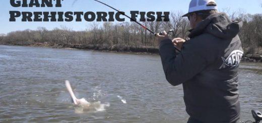 Catching-GIANT-PREHISTORIC-FISH