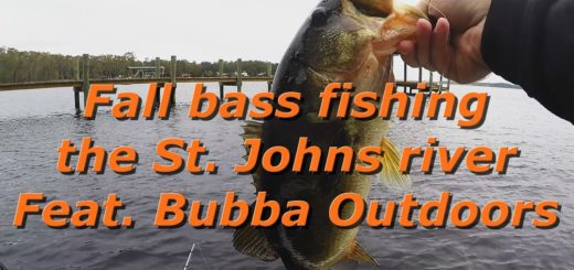 Fall-bass-fishing-on-the-St-Johns-river-Feat-Bubba-Outdoors