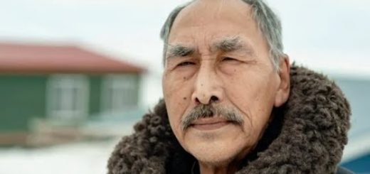 Inuit-break-silence-on-skin-graft-experiments