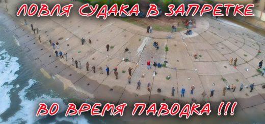 b643dab2cc987481b9df7e5218708146