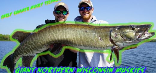 Early-Summer-GIANT-MUSKIES-Musky-Fishing-Tips-and-Techniques