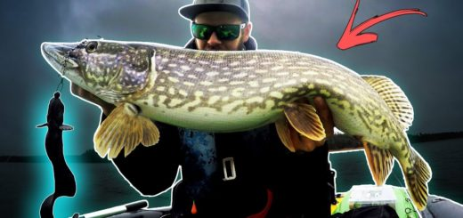 PIKE-TACTICS-How-to-fish-a-Deep-Weedline-Float-Tube-Fishing