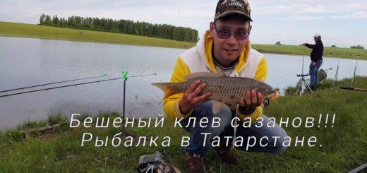 bae06688db1dc7121fc188d7f48594c3