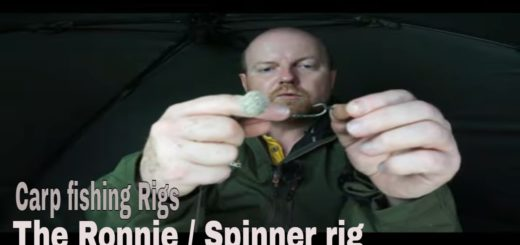 CARP-FISHING-The-RonnieSpinner-rig