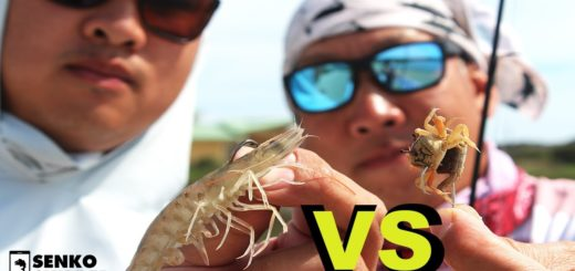 CRABS-VS-SHRIMP-Dad-VS-Son-Inshore-Saltwater-Fish-off