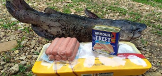 Channel-Catfish-Fishing-Bait-From-Dollar-General-Store-Bought-Catfish-Bait
