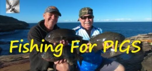 FISHING-FOR-PIGS-Fishing-amp-Cooking
