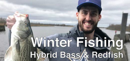 Winter-Fishing-For-Hybrid-Bass-amp-Redfish-in-Pensacola-FL-pensacolafishing