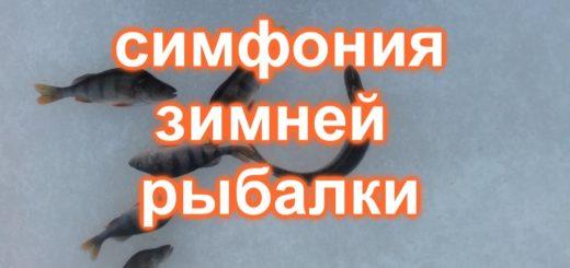 736aa146071adf12a5c23adf7f77d302