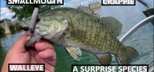Jumbo-Reservoir-Grand-Slam-Hot-Fishing-Action
