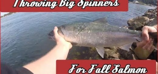 Bank-Fishing-Spinners-for-Fall-Salmon-Oregon-Fall-Salmon-Fishing