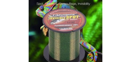 Review-Fishing-Line-100150200300500M-Super-Strong-Nylon-Fishing-Wire-Flourocarbon-Coated-Spotte