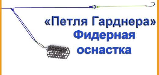 d0c28d0383affd8ceeb27b2484a4691a