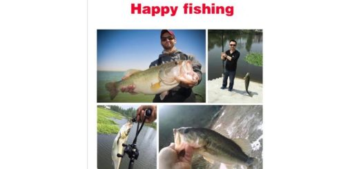 Review-OLOEY-5Pcs-Sinking-Wobblers-Multi-Jointed-Fishing-Lures-6-Segments-Swimbait-Hard-Bait-10cm-1