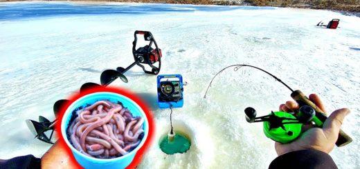 Ice-Fishing-w-NIGHT-CRAWLERS-Surprisingly-Effective-Winter-Bait