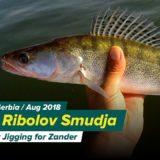 Letnji-Ribolov-Smudja-Dzigovanje-Summer-Jigging-for-Zander
