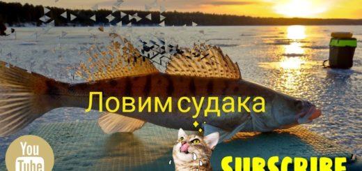 4e639771acd1426ab2ca322d78e8bf18