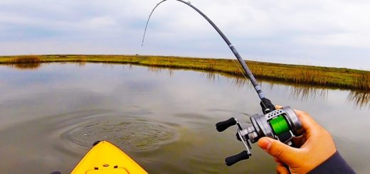 I-Had-to-Micro-Size-to-Catch-Big-Fish-Winter-Fishing-Tactics