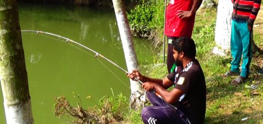 Mega-Fish-Catching-by-8-Hooks-in-Winter-Fishing