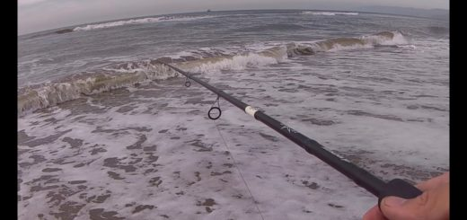Winter-Fishing-for-Surf-Perch-Tips-for-Beginners-After-Storm-Surprise-Oxnard-Ventura-County