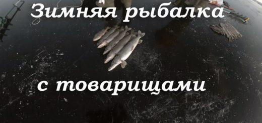 c711160641b08f15c465715fdb1b3886
