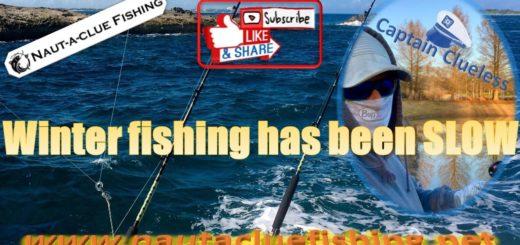 Terrible-winter-Fishing
