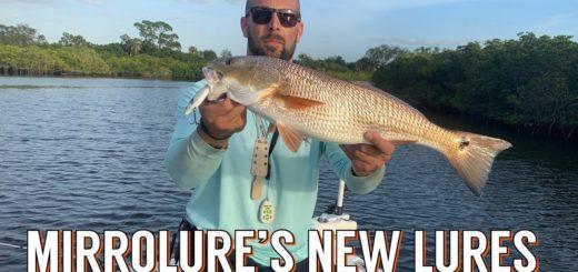 Winter-Fishing-Inshore-Tampa-Bay-w-Mirrolure