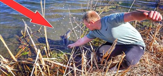 Unexpected-BIG-FISH-From-A-Roadside-Pond-Winter-Fishing