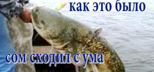 d015d2b1b364e17a1f2b9a824fd53df9