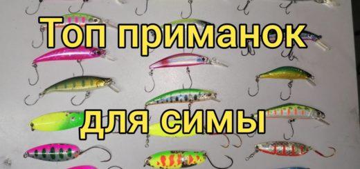 d45133811bf12a83b3884b6a7b9a9faf